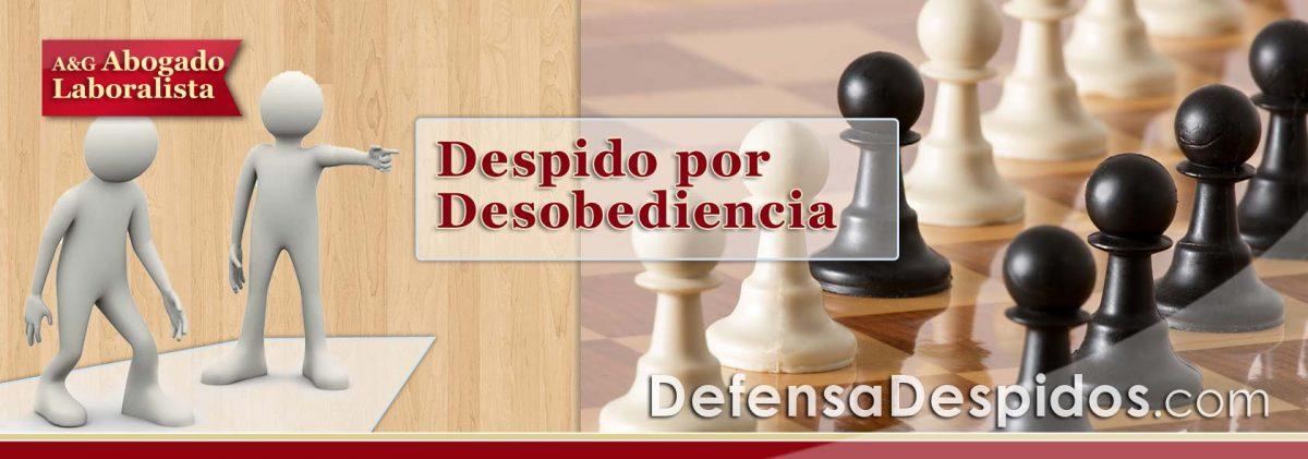 Desobediencia e Indisciplina: ¿me pueden despedir disciplinariamente por estas causas?